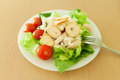 Caesar chicken salad with cherry tomatoes Royalty Free Stock Images