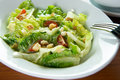 Caesar salad bowl of with a fork Royalty Free Stock Images