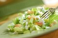 Caesar salad fresh ready to eat Royalty Free Stock Photography