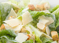Caesar Salad Macro Stock Images