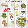 Caesar salad vector ingredients for vector illustration Royalty Free Stock Images