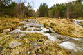 Cairngorm mountain stream rocky rushing down the mountains in scotland Royalty Free Stock Photography