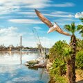 Cairo by day Royalty Free Stock Photo