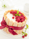 Cake charlotte with raspberries and cream selective focus Stock Photos