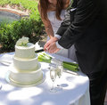 Cake cutting Royalty Free Stock Image