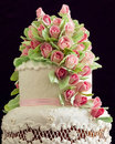 Cake delicious white wedding decorated with pink cream roses Stock Photos