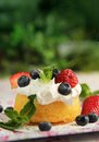 Cake and fruits Stock Photography