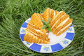 Cake on grass honey a plate with mint in the garden Royalty Free Stock Images