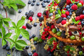 Cake made of wild fresh berry fruits on old wooden table Stock Image