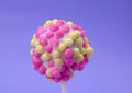 Cake pop Stock Images