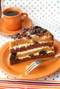 Cake with sour cream prunes and walnuts piece of Stock Photos