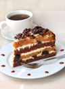 Cake with sour cream prunes and walnuts piece of Stock Images