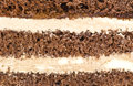 Cake texture in the photo Stock Images