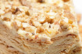 Cake with walnuts Stock Images