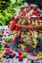 Cake wild fresh berry fruits closeup of on old wooden table Stock Photo
