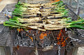 Calçots typical catalan onions on the barbecue Royalty Free Stock Image