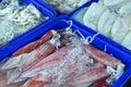 Calamar fresco en la caja de hielo Foto de archivo libre de regalías