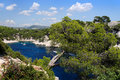 Calanques de pin de port dans le cassis Image stock