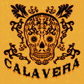 Calavera skull spanish text mexican illustration t shirt print Royalty Free Stock Image