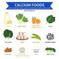 Calcium foods, food info graphic, icon vector