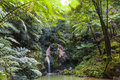 Caldeira Velha, hot spring and waterfall, Sao Miguel, Azores, Portugal Royalty Free Stock Photo