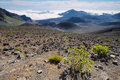 Caldera of the haleakala volcano in maui island hawaii Stock Photo