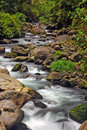 Caldera River rapids, Boquete, Chiriqui, Panama Royalty Free Stock Photo