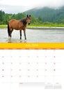 Calendar 2014. Horse. July