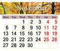 Calendar for November 2017 with yellow autumnal park