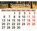 Calendar for November 2017 with yellow leaves in park