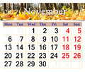 Calendar for November 2017 with yellow leaves