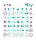 Calendar 2019. Vector English calender. May month. Week starts o