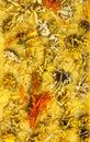 Calendula herbals flowers Royalty Free Stock Photo