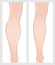 Calf reduction surgery vector image on a white background scroll down to see more of my designs linked below Royalty Free Stock Image
