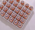 .40 caliber hollow point bullets lined up in a plastic case Royalty Free Stock Photo