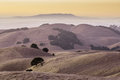 California Golden Hills Royalty Free Stock Photo