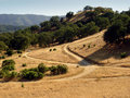 California hills Royalty Free Stock Photo