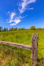 California meadow ranch in a blue sky spring day usa Stock Image