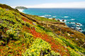 California state route vista with point sur historic park in background Royalty Free Stock Image