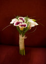 Calla Lily Bouquet Stock Photography