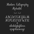 Calligraphic alphabet. Handwritten brush font. Uppercase, lowercase, ampersand. Wedding calligraphy Royalty Free Stock Photo