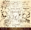 Calligraphic decorative vintage elements Stock Images