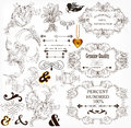 Calligraphic design elements and page decorations Stock Photos