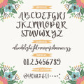 Calligraphic vector font with floral nature numbers ampersand and symbols flower hand drawn alphabet lettering Royalty Free Stock Photo