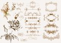 Calligraphic vintage design elements Stock Photography