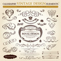 Calligraphic vintage ornament Vector frame Royalty Free Stock Photos