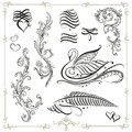 Calligraphy design elements vector set vintage black swan Stock Photos