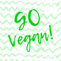 Calligraphy Go Vegan. Vector hand drawn sign. Elements for design. Motivational quote.