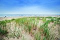 Calm beach with dunes and green grass Royalty Free Stock Photo