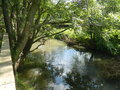 calm flowing Iowa stream background outdoors photography water Royalty Free Stock Photo
